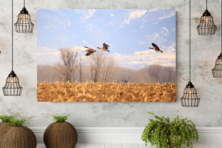 HD Metal Art, Indoor/Outdoor Wall Decor,  Pixolate, Subtint BIRDS 70030 200 THUMBNAIL