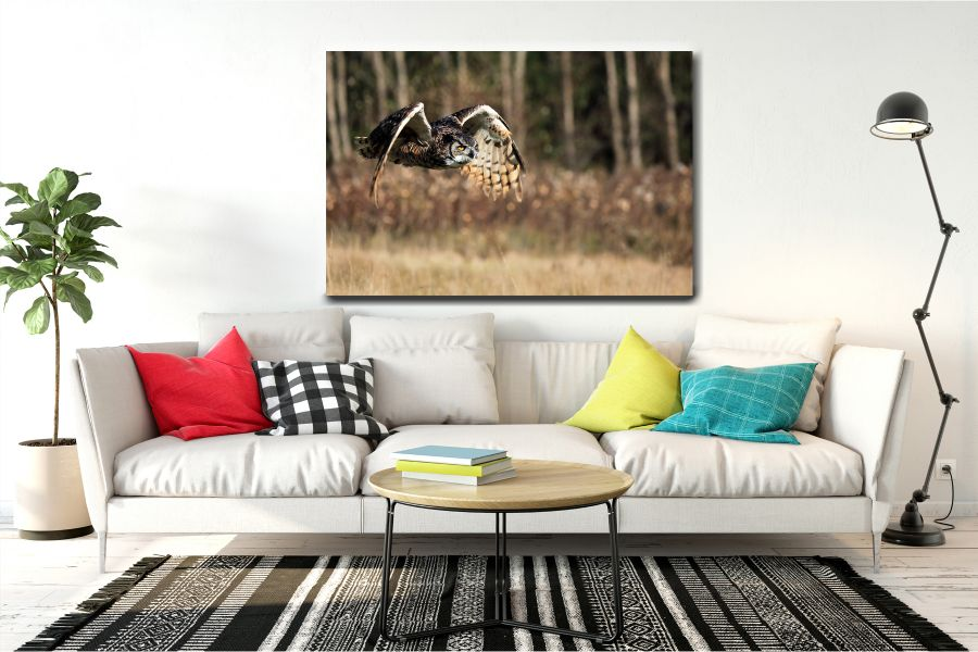 Canvas Art Wall Decor, BIRDS 70037 THUMBNAIL