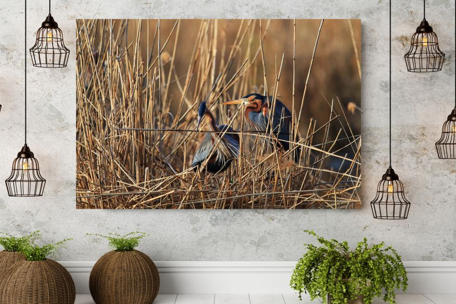 Canvas Art Wall Decor, BIRDS 70041 THUMBNAIL