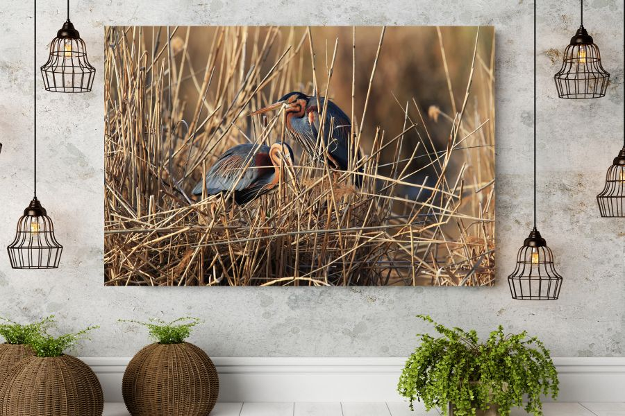 Canvas Art Wall Decor, BIRDS 70042 THUMBNAIL