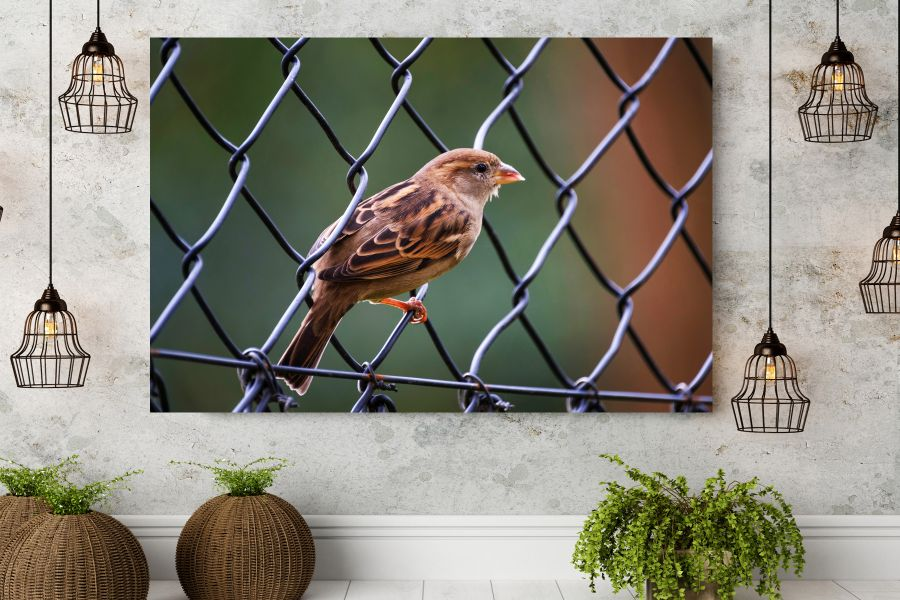 HD Metal Art, Indoor/Outdoor Wall Decor,  Pixolate, Subtint BIRDS 70045 200 THUMBNAIL