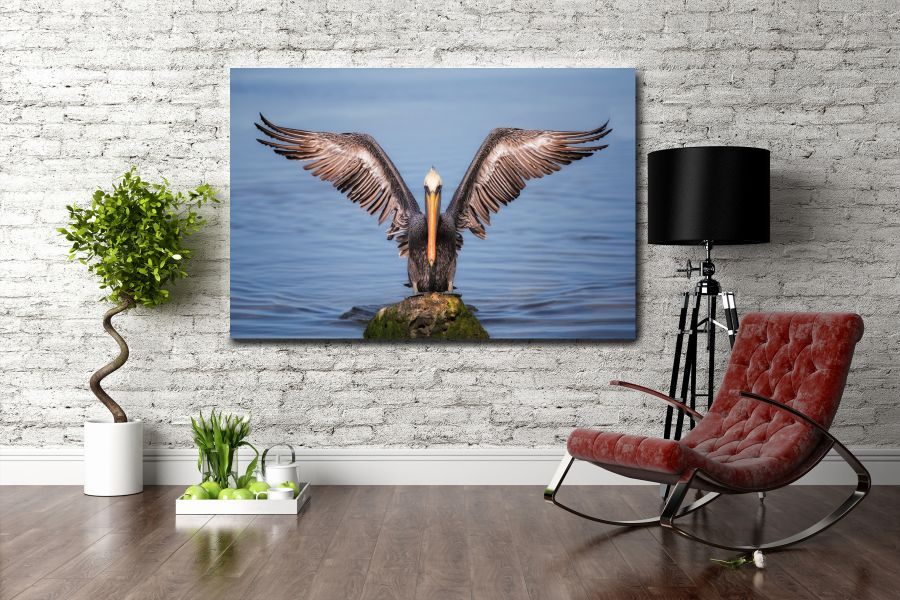 Canvas Art Wall Decor, BIRDS 70047 THUMBNAIL