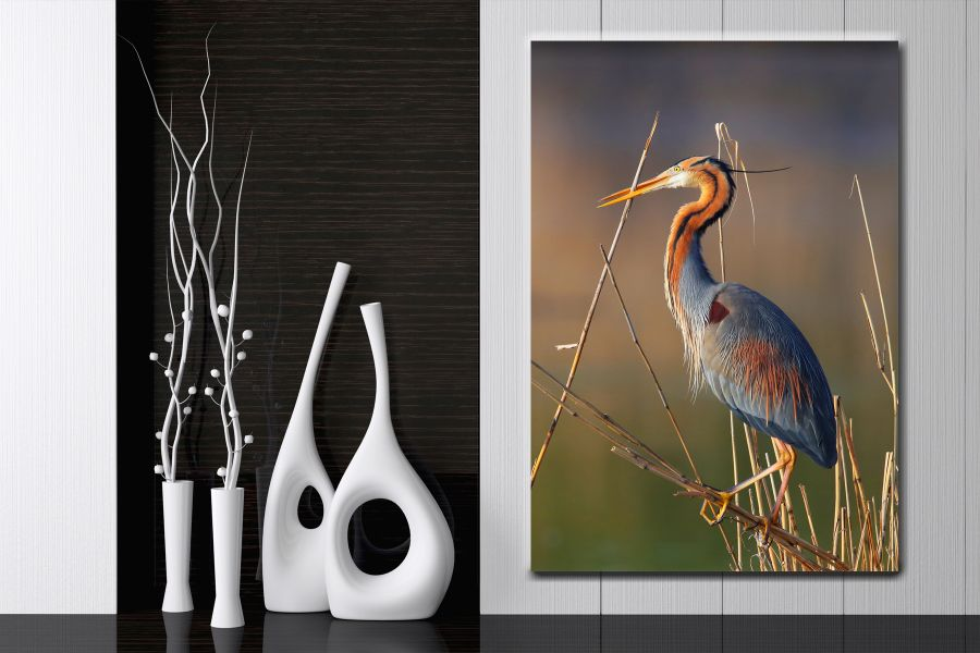 Canvas Art Wall Decor, BIRDS 70062 THUMBNAIL
