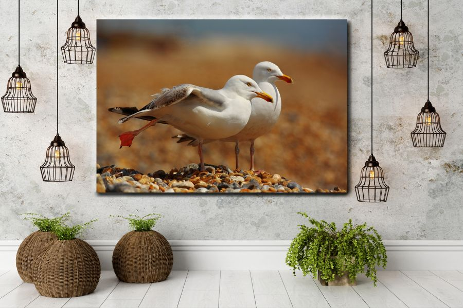 Canvas Art Wall Decor, BIRDS 70065A LARGE