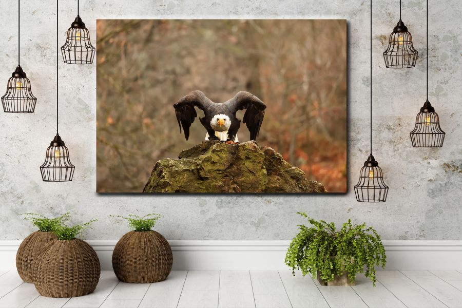 HD Metal Art, Indoor/Outdoor Wall Decor,  Pixolate, Subtint BIRDS 70216 200 THUMBNAIL