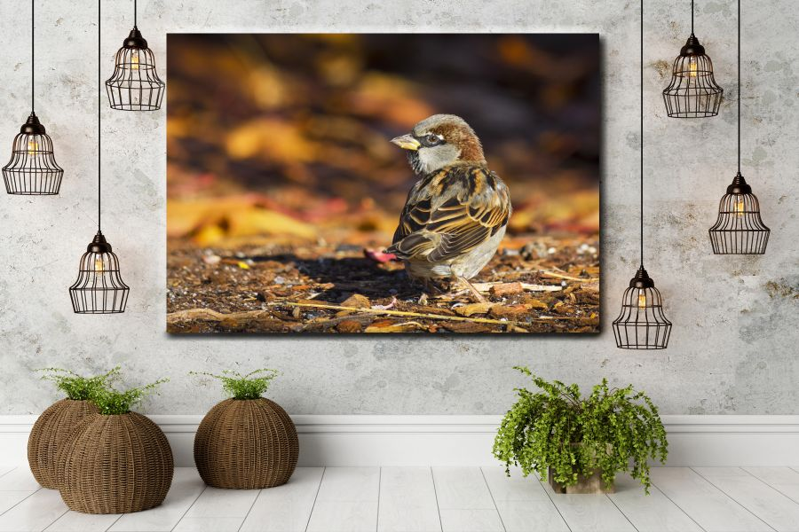 HD Metal Art, Indoor/Outdoor Wall Decor,  Pixolate, Subtint BIRDS 70247 200 THUMBNAIL