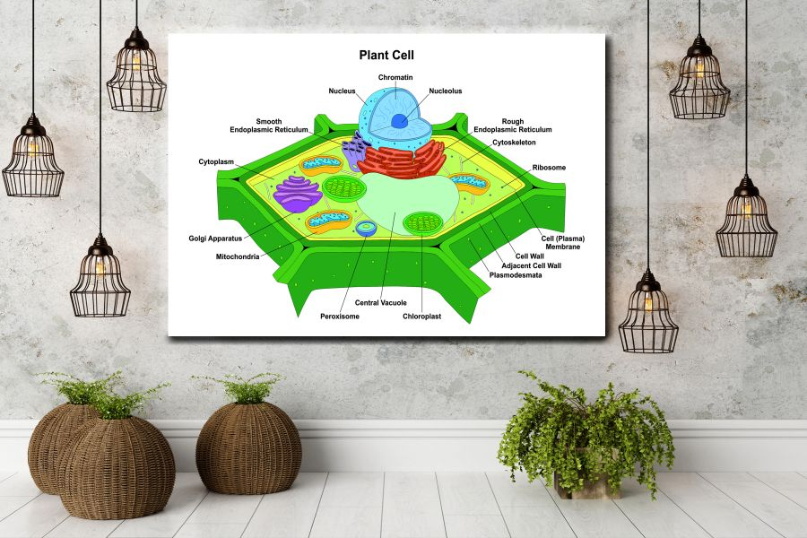 Canvas Art Wall Decor, CANVAS Art EDUCATION & SCIENCE 98017 110 LARGE