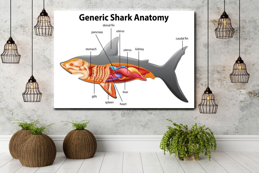 Canvas Art Wall Decor, CANVAS Art EDUCATION & SCIENCE 98027 110 LARGE