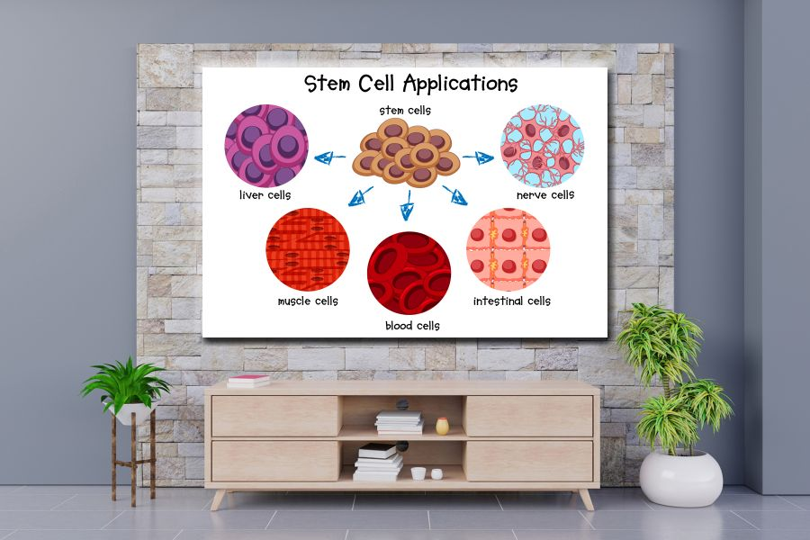 Canvas Art Wall Decor, CANVAS Art EDUCATION & SCIENCE 98113 110 LARGE