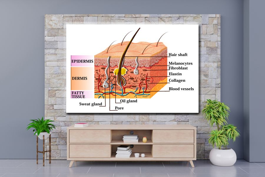 HD Metal Art, Indoor/Outdoor Wall Decor,  Pixolate, Subtint EDUCATION SCIENCE 98121 200 THUMBNAIL