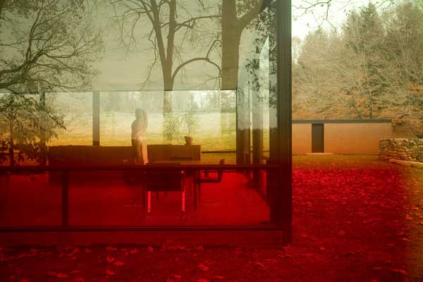 James Welling: Glass House 0696
