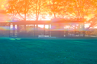 James Welling: Glass House 8167 THUMBNAIL