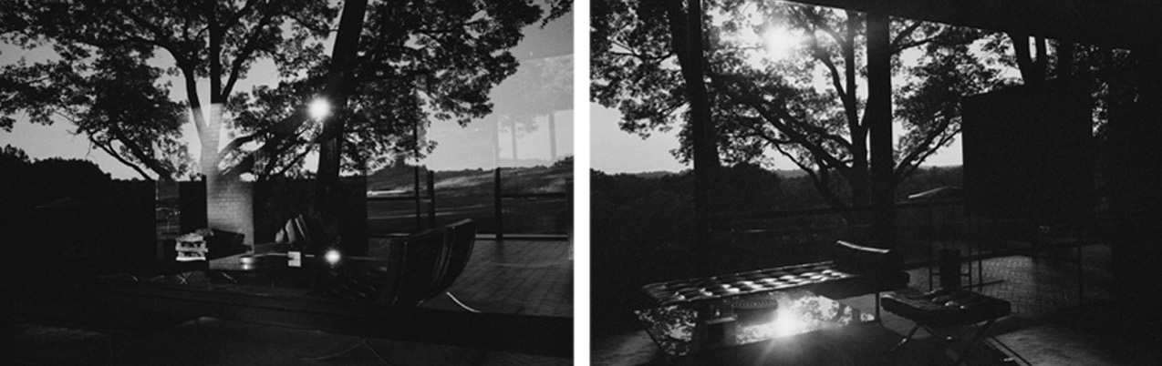 Mauro Restiffe: Glass House #8 and Glass House #9 Diptych THUMBNAIL