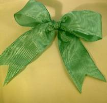 Lyon French Wired Ribbon - Celadon