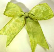 Lyon French Wired Ribbon - Kiwi