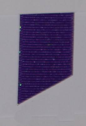 Dazzle (Glittered Grosgrain) - Regal Purple LARGE