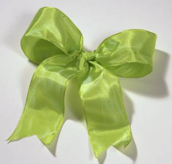 Lyon French Wired Ribbon - Lime LARGE