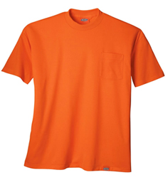 Dickies Orange Tee
