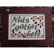 Designs By Lisa - Nuts Gather Here THUMBNAIL