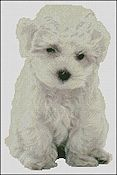 Paula's Patterns - Bichon Puppy THUMBNAIL