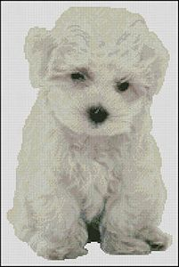 Paula's Patterns - Bichon Puppy MAIN