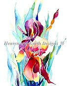 Heaven and Earth Designs - Iris Bud - Sold Out/Discontinued
