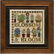 Erica Michaels - Blossom & Bloom