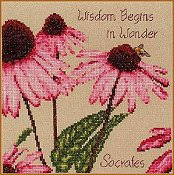 Cross Point Designs - Wisdom