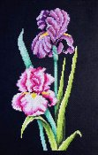 Bobbie G Designs - Iris On Black