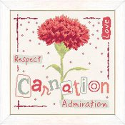 Lilipoints - Carnation THUMBNAIL