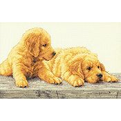 Dimensions Kit - Golden Retriever Puppies