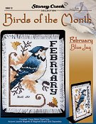 Bird of the Month - February (Blue Jay)_THUMBNAIL