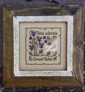 The Drawn Thread - Botanical Stitches - Sweet Violet