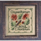 The Drawn Thread - Botanical Stitches - Chrysanthemum THUMBNAIL