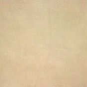 R & R Reproductions 30ct Linen - 029 Korty's Special Blend