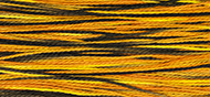 Weeks Dye Works #5 Pearl Cotton - 4101 Trick or Treat THUMBNAIL