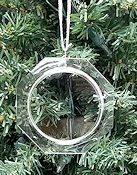 Beveled Acrylic Ornament Frame THUMBNAIL