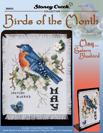 Bird of the Month - May (Eastern Bluebird) MAIN
