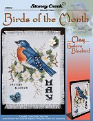 Bird of the Month - May (Eastern Bluebird)_THUMBNAIL