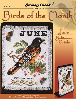 Bird of the Month - June (Baltimore Oriole) MAIN