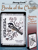 Bird of the Month - January (Black-Capped Chickadee) THUMBNAIL