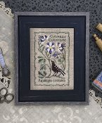 The Drawn Thread - Botanical Stitches - Colorado Columbine THUMBNAIL