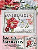 Flowers of the Month - January Amaryllis