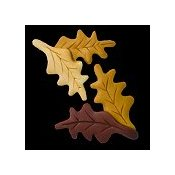 Magnets - February Oak Leaves_THUMBNAIL