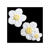 Magnets - May White Flowers_THUMBNAIL
