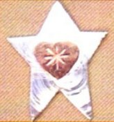 Puffin & Company Magnetic Needle Nanny - Mini Star THUMBNAIL