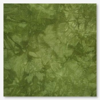 Picture This Plus Hand-Dyed Moss 16ct Aida MAIN