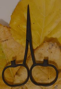 Pumpkin Scissors Primitive MAIN