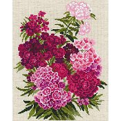 Riolis Cross Stitch - Sweet William