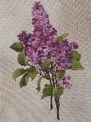 The Silver Lining - Lavender Lilacs 156
